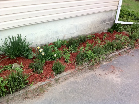 Right side flower bed.