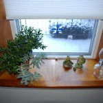 Window sill #3.