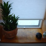 Window sill #1.