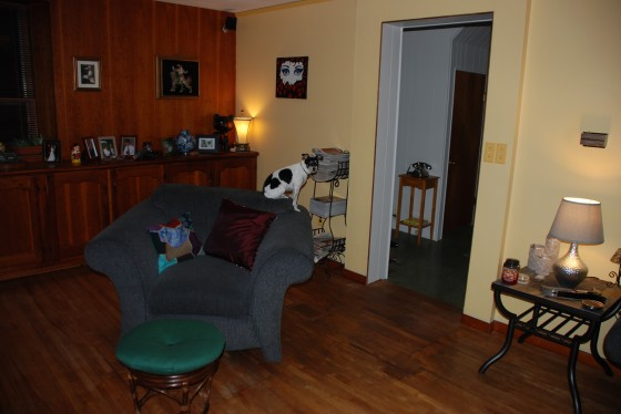 Living Room before (with Chloe).